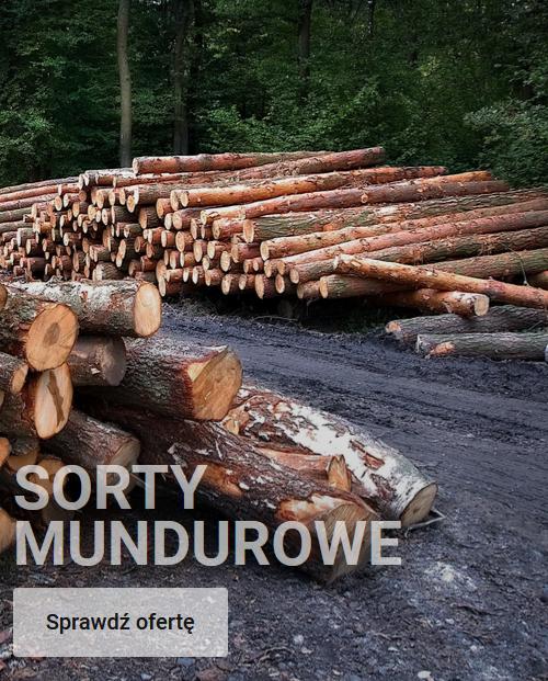Sorty Mundurowe